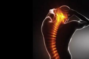 spine-flexibility