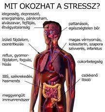 stressz-megint
